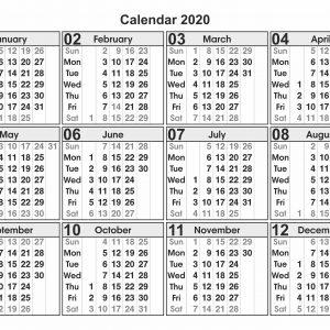 Calendar for Year 2020