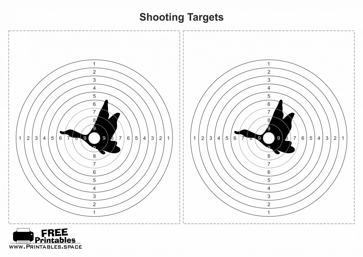 Shooting Target with Centre of Duck